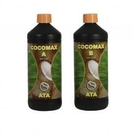 Coco Max A+B ATA de Atami...