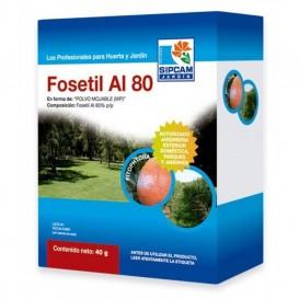 Fungicida Phytophthora y mildiu Fosetil Aliette 80WG 40g