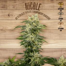 Nicole feminizada de The Plant