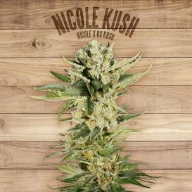 Nicole Kush feminizada de...