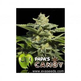 Papa´s Candy feminizada de...