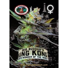 King Kong feminizada de Big...