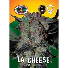 L.A. Cheese feminizada de...