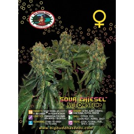 Sour Chiesel...