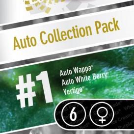 Auto Collection Pack #1 de Paradise Seeds