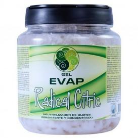 Ambientador Evap Radical Citric 900 ml