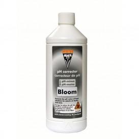 Ph - Down Bloom 1 L de Hesi Regulador