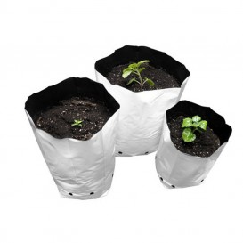Bolsa de cultivo blanca 100 u. 25 cm - 0