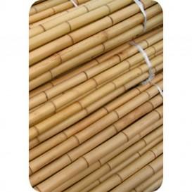 Tutor de bambú 0